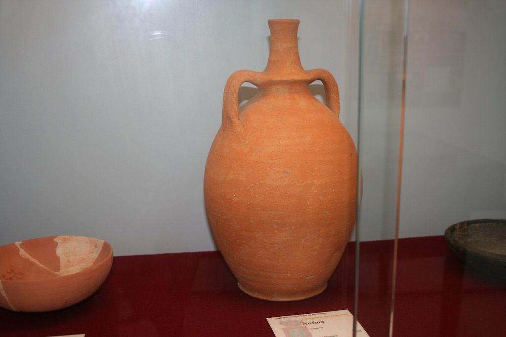 Golondrina Daurica